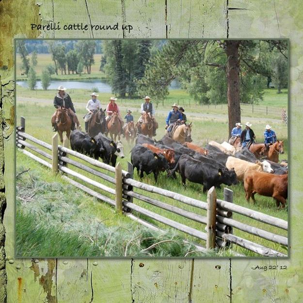 web2_pareilla_ranch_2012