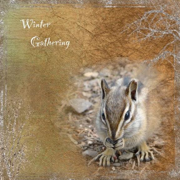 web_gathering