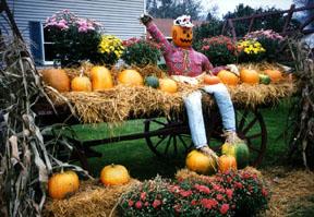 9_24_scarecrow