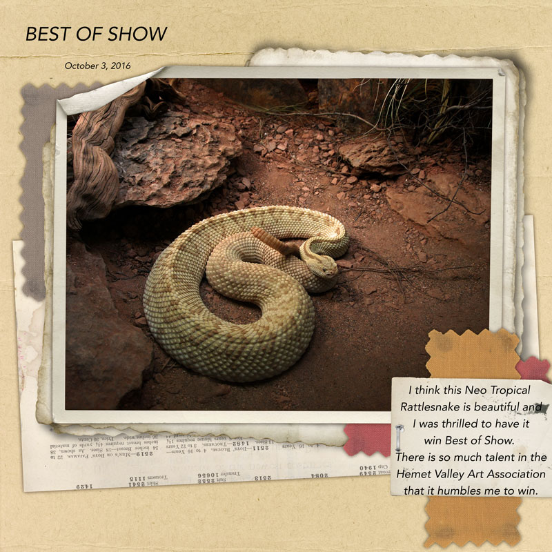 best_of_show2
